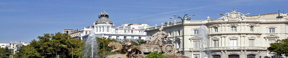 Animo Valencia - Centre historique